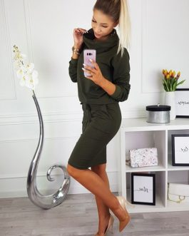 Turtleneck Long Sleeve Solid Fashion Elastic Waist Casual Dress