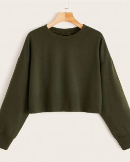 Long Sleeve Round Neck Basic Casual Sweatshirts