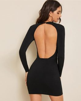 Long Sleeve Slim Fitted Backless Sexy Bodycon MIni Dress