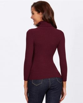 Rolled Neck Ribbed Knit Fitting Long Sleeve Basic Skinny Sweaters