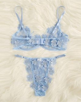 Applique Lace Sexy Bra And Pantie Sleepwear Intimate Lingerie Sets