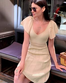 Sexy V-neck Short sleeve transparent office lady Knitted Dress