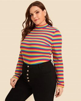 Plus Size Mock Neck Long Sleeve Rainbow Striped T-shirts