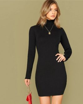 Solid Slim High Neck Fitted Elegant Bodycon Sweater Dress