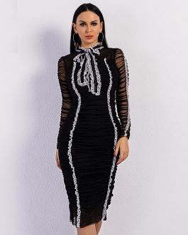 Bowknot High Neck Folds Long Sleeve Mesh Mini Dress