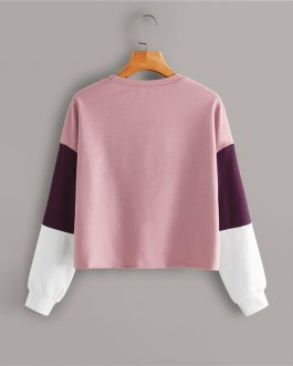 Drop Shoulder Colorblock Casual Sweatshirt