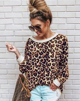 Leopard Long Sleeve Round Neck Casual Sweatshirt