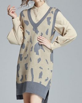 Leopard Print Casual Fall Long Sleeves Two Piece Sets