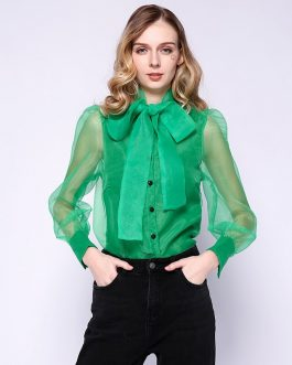 Sexy Casual Bowknot Transparent Shirt