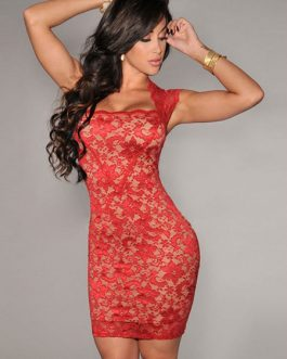 Sexy Club Lace Semi Sheer Bodycon Dress