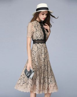 Sexy Hollow Out Lace A-Line Elegant Party Dress
