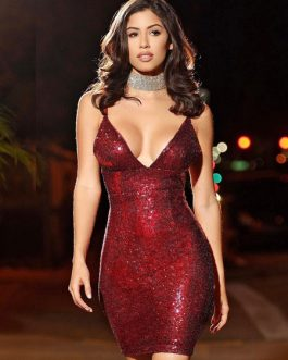 Sexy Party Glitter Sequins Pencil Dress