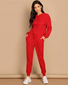 Solid Hoodie and Drawstring Waist Pants Plain Two Piece Set