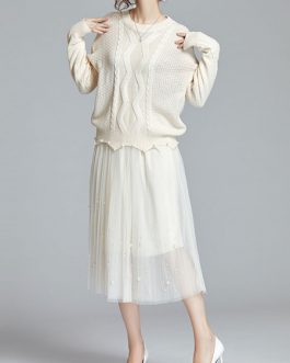 Tulle Jewel Neck Crochet Studded Casual Long Sleeves Two Piece Sets