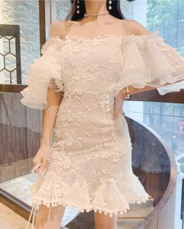 Vintage Ruffles Embroidery Slash Neck Mini Dress
