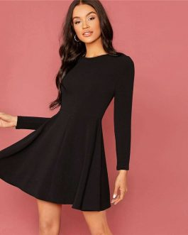 Elegant Zipper Back Long Sleeve Flared Short Dresses