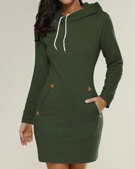 Hooded Long Sleeve Mini Dress