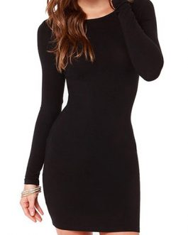 Round Neckline Long Sleeves Mini Dress