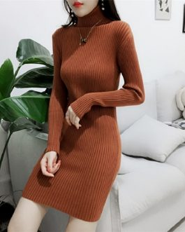 Turtleneck Warm Korean Style Minimalist Casual Sweater Dress