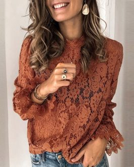 Flare Long Sleeve Lace O-neck Elegant Street Wear Blouse