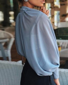 Hollow Out Lantern Sleeve Turtleneck Casual Blouses