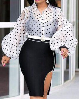 Polka Dot Sheer Turn Down Collar Retro Long Sleeves Organza Tops