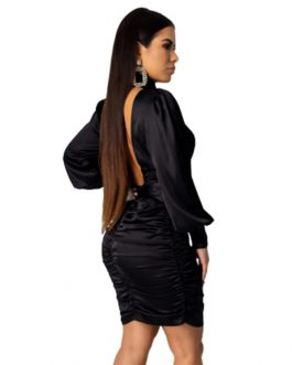 Turtleneck Slim Bodycon Long Sleeve Backless Party Dress