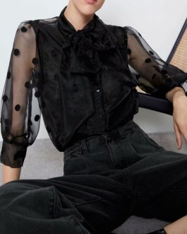 Sheer Bows Embellished Collar Retro 3/4 Length Sleeves Organza Tops