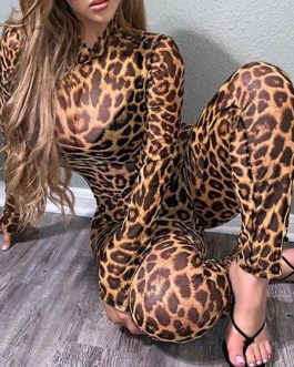 Leopard Print Jumpsuit Long Sleeves Sheer Skinny One Piece Outfit