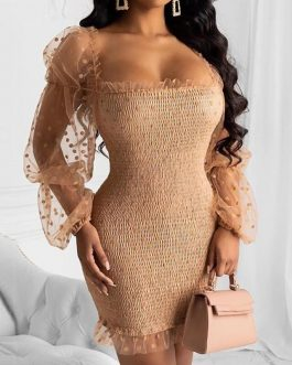 Sexy See-through Embroidered Mesh Ribbed Knitted Mini Party Dress