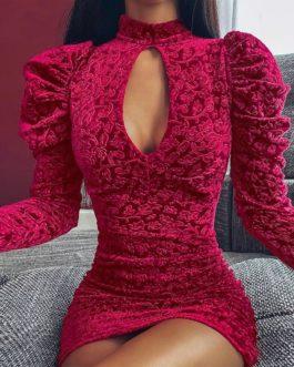 Sexy Velvet Floral Print Elegant Mini Party Dresses