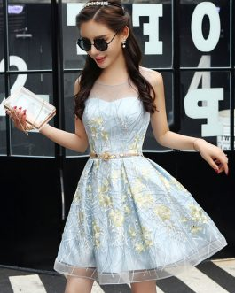 Short Homecoming Lace Sweetheart Neckline Illusion Keyhole Embroidered Cocktail Dress