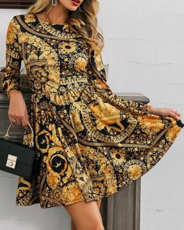 Skater Jewel Neck Long Sleeves Printed Casual Flared Dresses