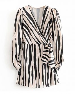 V Neck Casual Zebra Fashion Stripe Mini Dress