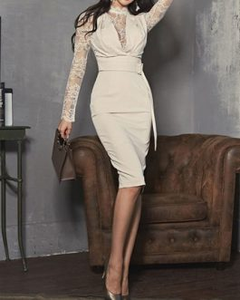Sexy High Collar Lace Bodycon Dress With Belt