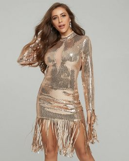 Sexy Patchwork Lace Bodycon O-Neck Fringe Sequin Dress