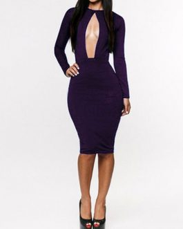 Sexy Stretchy Cut-Outs Bodycon Dress