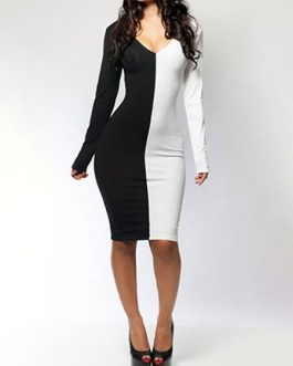 Sexy Two Tone Stretchy Bodycon Dress
