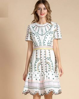 Fashion Runway Short Sleeve Hollow out Embroidered Holiday Dress