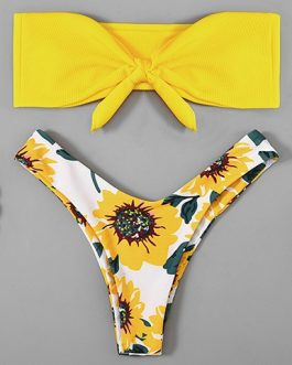 Floral Print Solid Color Two Piece Swimsuit