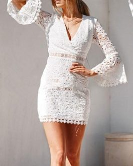 Lace Bodycon Bell Sleeves Cut Out Sexy V Neck Sheath Dress