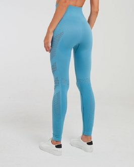 Seamless Tummy Control Gym Fitness Leggings