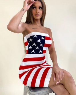 American Flag Print Strapless Dress