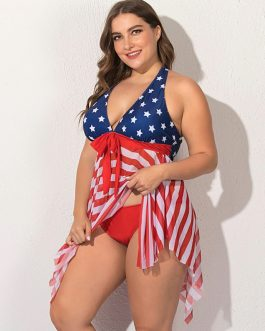 American Flag Print Two Piece Swimsuit