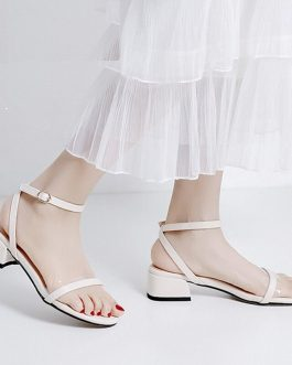 Casual Cross Strap Transparent Thick Heels Sandals