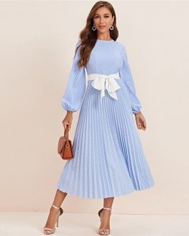Polka Dot Pleated A Line Elegant High Waist Long Dresses