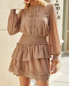 Elegant Embroidery Polka Dot Lace Dress
