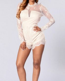 High Collar Long Sleeves Zipper Layered Lace Sheer Jumpsuit