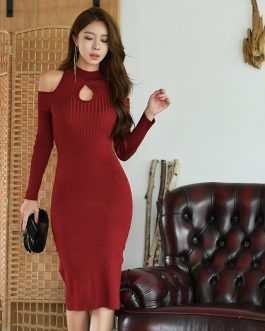 O-Neck Hollow-out Knitted Bodycon Dress