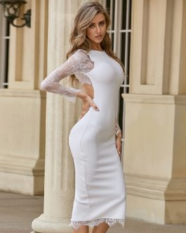 Sexy Lace Long Sleeve Backless Celebrity Club Party Vestidos Bandage Dress